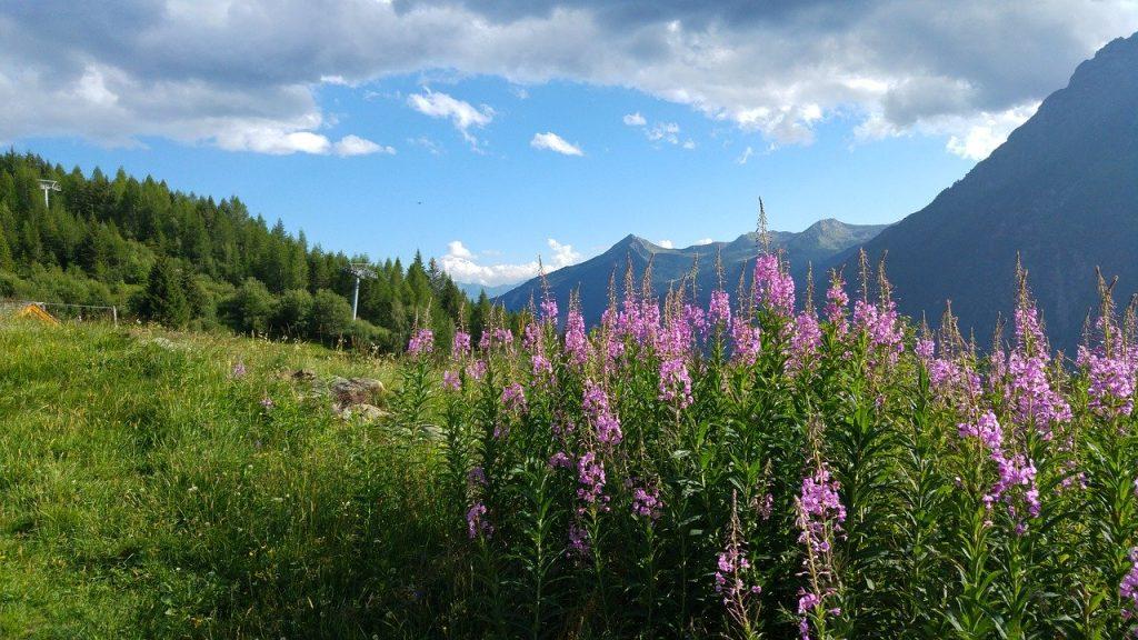 De Italiaanse Alpen op z'n best - Bergwandelen.com